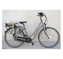 cycle e-bike